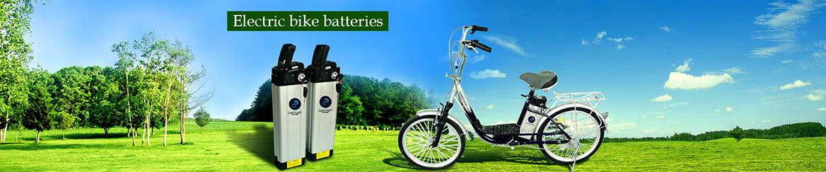 36V Rechargeable Lithium Bikes Battery for Sale